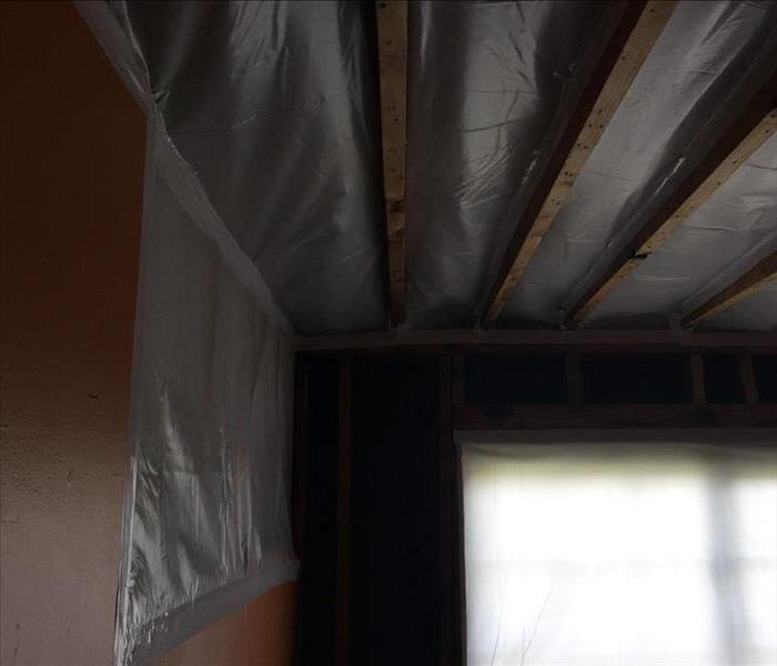 Mold Infested Ceilings  After