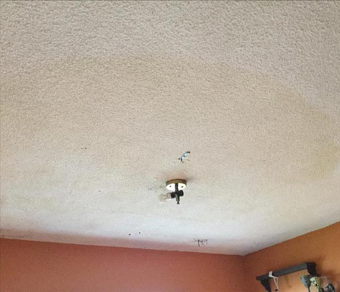 Mold Infested Ceilings  Before