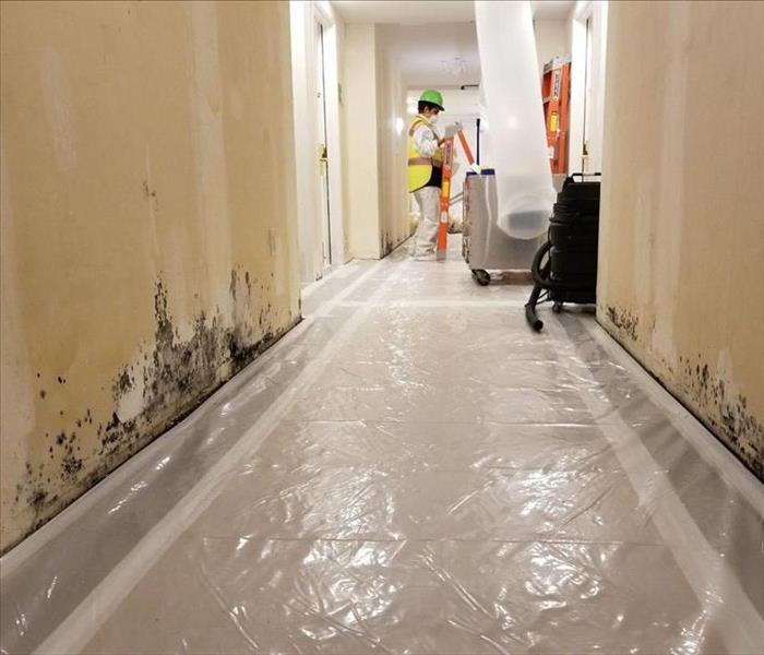 Commercial Commercial Restoration: Water and Mold Damage