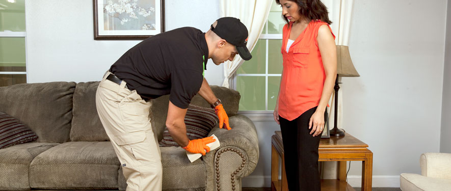 Encino, CA carpet upholstery cleaning