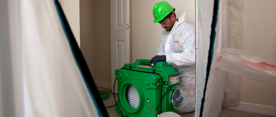 Encino, CA mold cleanup