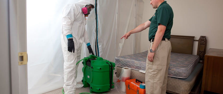 Encino, CA mold removal process